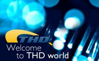 Logo THD Lab