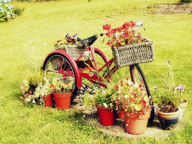 Vuoi arredare da zero il tuo giardino di casa aziende news for Idee per abbellire il giardino