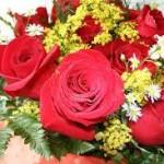 Scegliere il miglior servizio di consegna fiori online