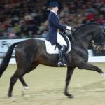 Abbigliamento per l'equitazione: le giacche