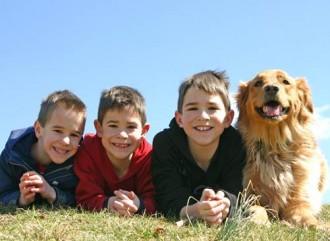 Boys-and-dog-330x241