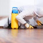 Perché scegliere i pavimenti in resina
