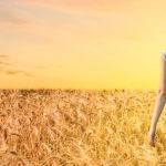 5 suggerimenti per trovare un'impresa funebre di qualità