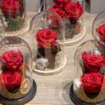 Cosa sono le Rose Stabilizzate: Scopriamolo insieme